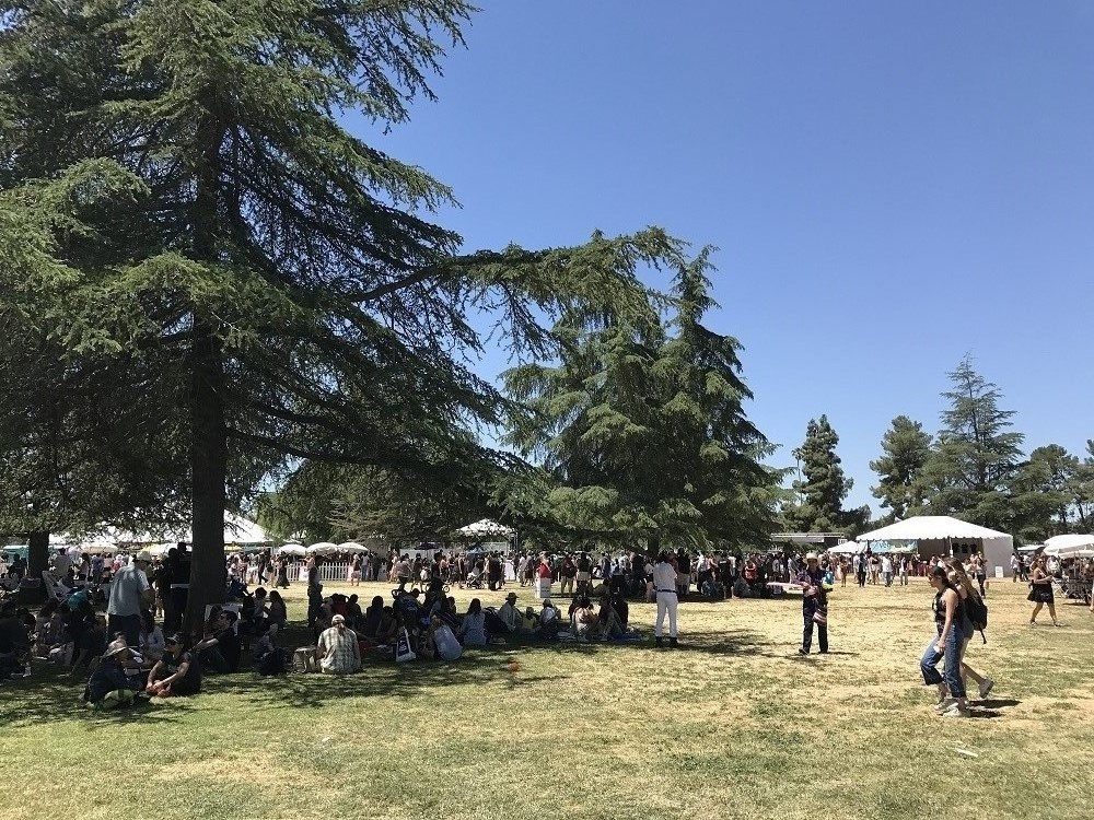 My vegan Dishes at Los Angeles VegFest | @bychris